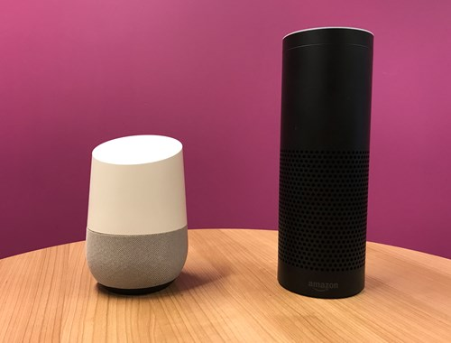 echo and google home